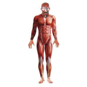 Anatomisk Muskler Morphsuite Kostyme - M