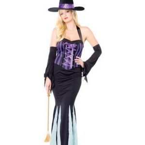 Bewitching Beauty Kostyme