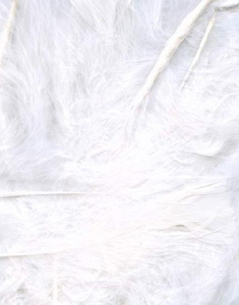 8 gram Hvite Dekorative Fjær 6-12 cm