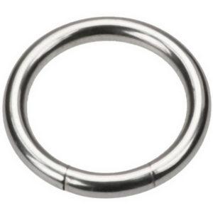 Silver Segment Ring